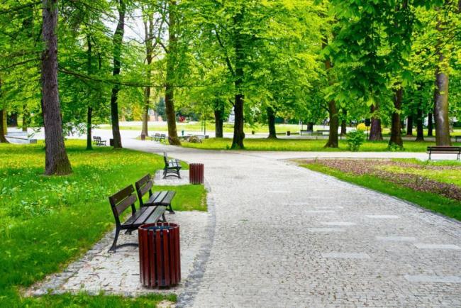 park_newm24