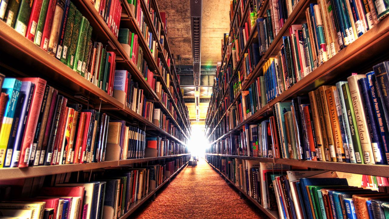 biblioteka_newm24